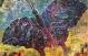 המכללה האקדמית אחוה -תערוכה חדשה של תלמידי הסדנה לאמנות